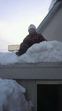 今年の大雪で